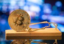 Everybody's Bitcoin