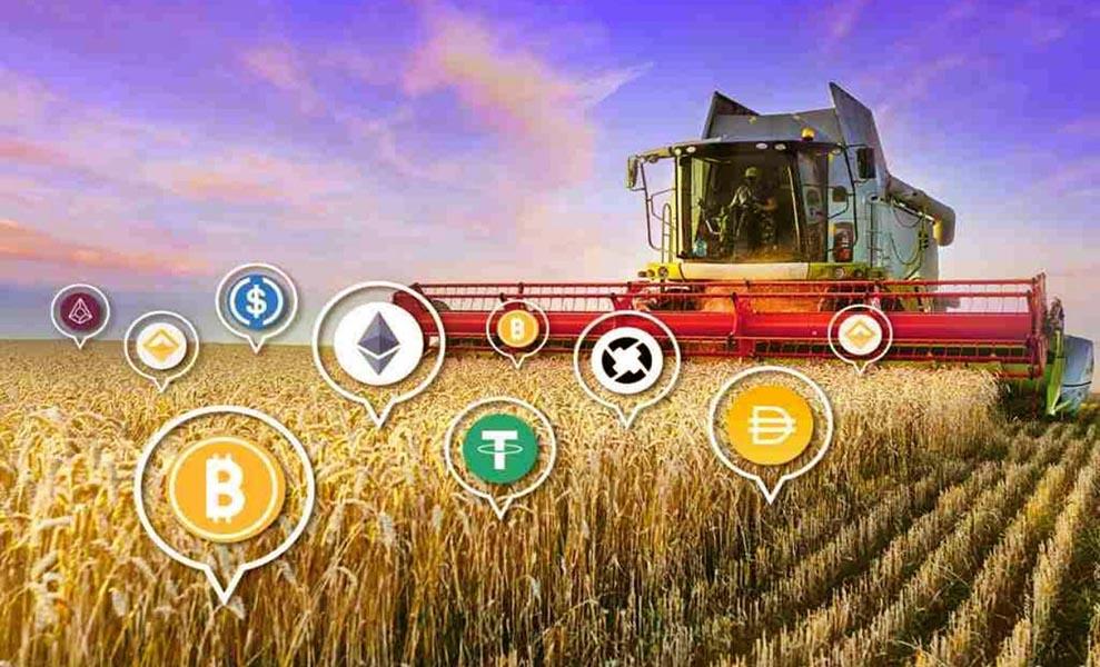 Don-Key Yield Farming Aggregator