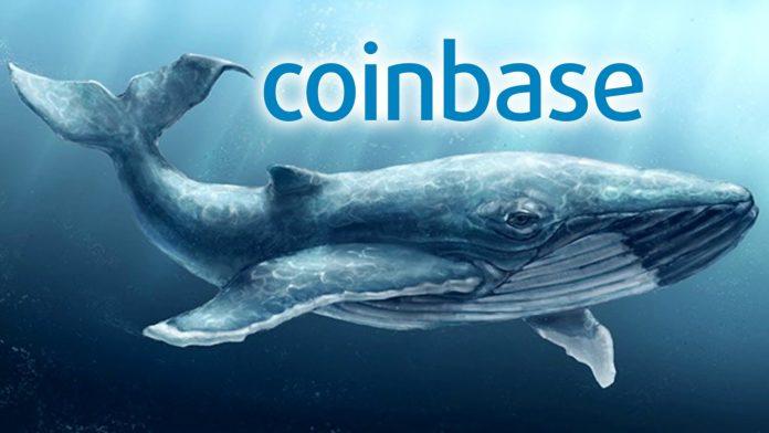 Coinbase получает 13003 BTC от анонимного кита