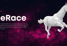 Проект DeRace
